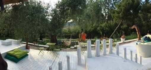Panoramic of herb garden