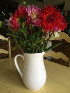 Ikea jug and home grown dahlias