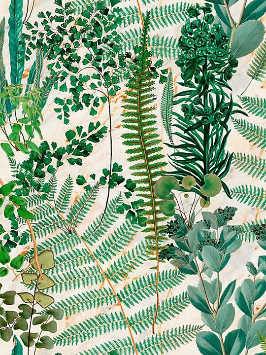 Sanctuary Wallpaper Mural by MINDTHEGAP