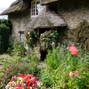 Thatched cottage with flowering garden
